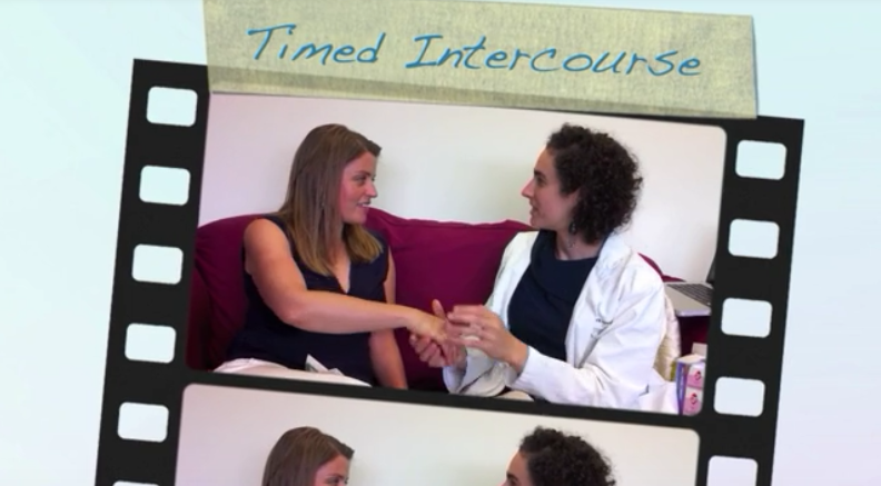 Timed Intercourse for Pregnancy