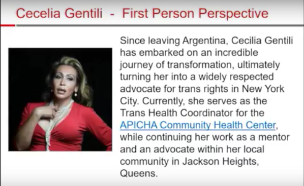 Cecelia Gentili - First Person Perspective slide