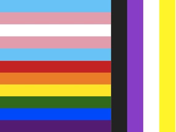 Trans LGBTGNC flag