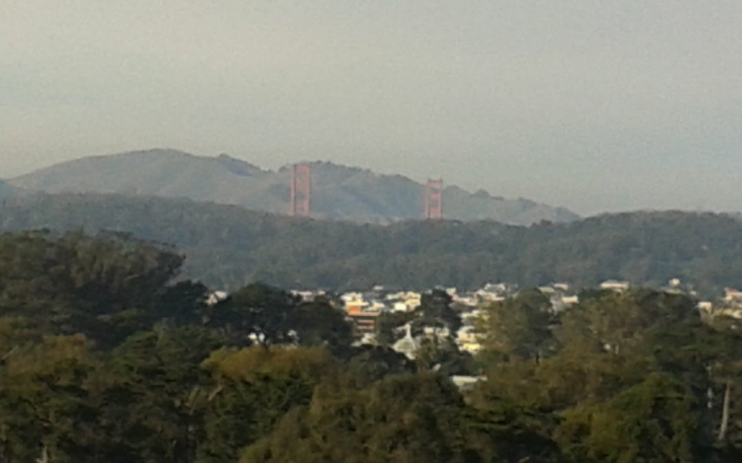 view overlooking trees, houses, with the Golden Gate Bridge in the background