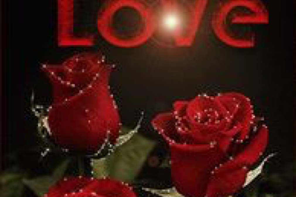 Love in red with red roses